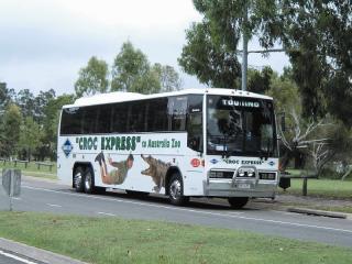 Croc Bus
